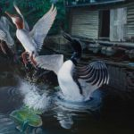 "SUDDENLY - Common Loon & Mergansers acrylic on panel 24"" x 36"" 961cm x 91cm)"
